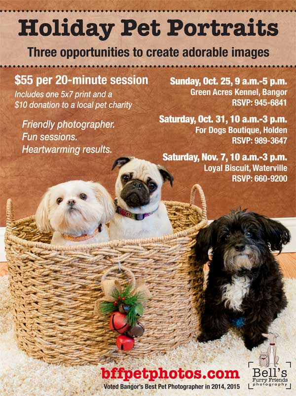 Holiday-Pet-Portraits-flier-General