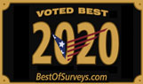 best-of-surveys-2020